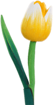 products wooden tulip head 6 cm matt yellow white yellow on 30 cm stem
